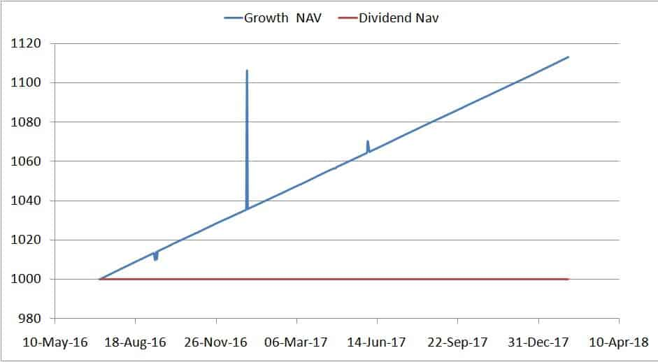 Growth vs Daily Dividend fund